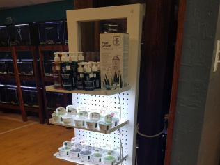 Tissue Culture plant sale display