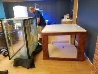 Piano movers moved our 240 gallon tank